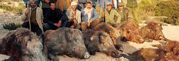 chasse pratiquée en Tunisie