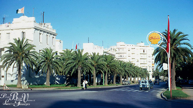 avenue-mohamed-5